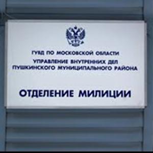 Отделения полиции Николаевск-на-Амуре